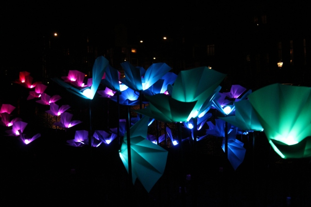 Amsterdam Light Festival - On the Wings of Freedom